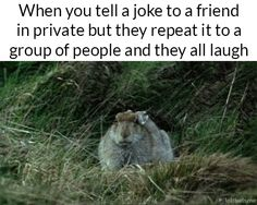 Everyone thinks that person is so clever and that you are so quiet. You are not funny.     YES, I'm funny, but my loud friend stole my joke. That is then NOT funny.
