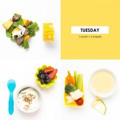 1 Lunch + 2 Snacks #103