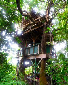Hana Lani-Tree top bungalows in Maui, Hawaii