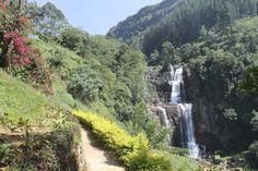 Landscape of Nuwara Eliya, Sri Lanka, with waterfall