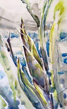 NZ flax watercolour