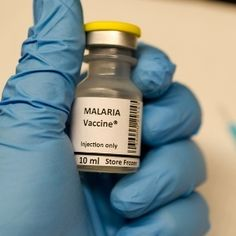 Africa needs new drugs to combat malaria