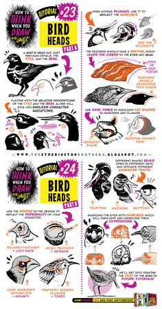 "drawingden: ""How to draw BIRDS HEADS tutorial by STUDIOBLINKTWICE """