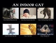 OMG!! So True!! LOL <3 ^_^ <3