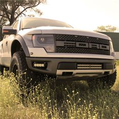 FORD Raptor with Baja Designs LED Stealth and OnX lights.  SCA Performance and Detail.  Contact Facebook or web site for pricing.