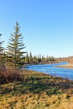 AM Dolce Vita: Calgary in the Fall, Weaselhead Wetlands from North Glenmore Park
