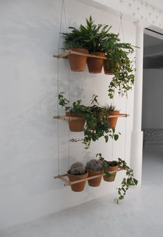 Hanging terracotta pots hanging window boxes, hanging planters, hanging she Hanging Window Boxes, Hanging Planters, Diy Hanging, Hanging Shelves, Hanging Herbs, Hanging Gardens, Ceiling Shelves, Hanging Basket, Indoor Window Boxes