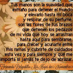 Fernando Delgadillo Tus hojas de noviembre