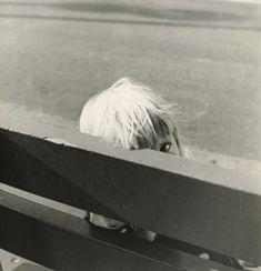 Vivian Maier Untitled, 1953-61