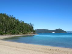 Dugong Beach on Whitsunday Island in Whitsunday Islands National Park, Queensland, Australia, has a popular campsite. Fraser Island, Queensland Australia, Cairns, Campsite, Brisbane, Islands, National Parks, Popular, Beach