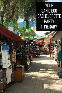 San Diego Bachelorette Party Itinerary Travel Advice, Travel Guides, Travel Tips, Top Travel Destinations, Best Places To Travel, Cruises, Travel Around The World, Travel Usa, Family Travel