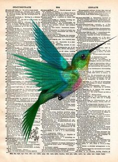 Hummingbird art print, bird art, childrens art, vintage dictionary print -  - 1