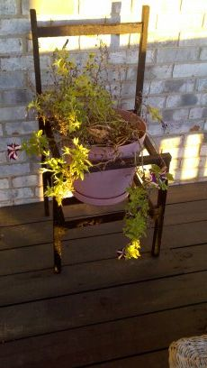 Planter chair made from tobacco sticks