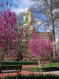 Berea College, Kentucky