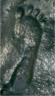 Image Of The Day - An Amazing, Very Controversial Footprint That Has Not Been Argued By Evolutionists - MessageToEagle.com -- The question is why this modern footprint could possibly have been discovered in Permian strata, which - according to modern scientific thinking - dates from 290 to 248 million years ago.
