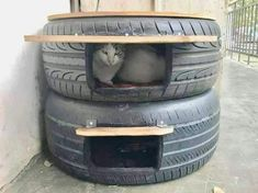 Discussion: Do old automobile tires make a safe cat bed for feral cats? - Posted November 2018 The photo below has made the rounds on social media showing how old tires - Feral Cat Shelter, Feral Cat House, Feral Cats, Winter Cat Shelter, Animal Shelter, Outside Cat House, Outside Cat Shelter, Outside Cat Enclosure, Niches