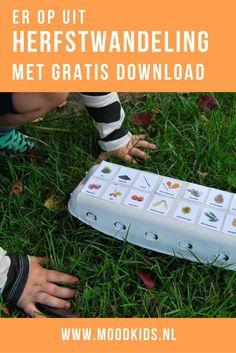 Zelf een leuke en informatieve herfstwandeling maken met je kids kan met deze eierdoos met herfst thema. Print uit, knip en plak en lopen maar!