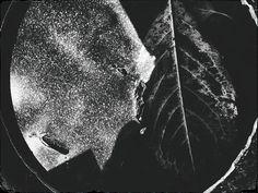 Goya: Niepoddaniec
