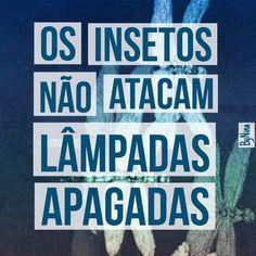 Os insetos não atacam lâmpadas apagadas. Para bom entendedor… #autordesconhecido #boanoite #seafastedeinsetos #brilhe #instabynina