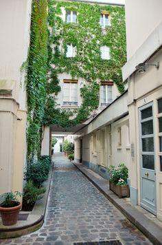 dream-l-a-n-d: didn't know an alley could be so freaking beautiful