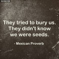 When someone keeps saying you will fail, bear this proverb in mind