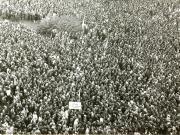 Mii de locuitori ai Capitalei şi-au exprimat, în Piaţa Palatului Republicii, adeziunea faţă de C.C al P.C.R., în legătură cu situaţia creată de evenimentele din Cehoslovacia. (21 august 1968) How To Dry Basil, Lp, Herbs, Herb, Medicinal Plants