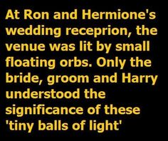 LOVE. New headcanon. Was Harry and Ginny's wedding wholly Quidditch-themed?