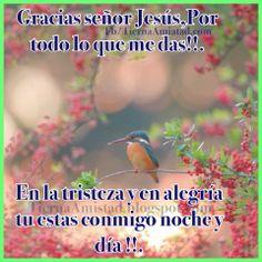 Gracias Dios por todo lo que me das!