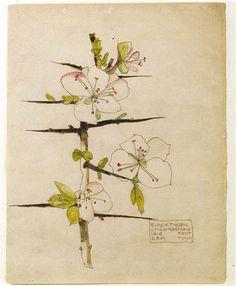 Charles Rennie Mackintosh. Blackthorn. Chiddingstone, Kent. 1910.