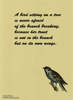 A Bird Sitting On a Tree-Inspirational Quotes-Erica Massaro, EDMPoetryPhotography on Etsy.