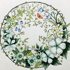 Take a peek at this great artwork on Johanna Basford's Colouring Gallery! Colouring Pages, Adult Coloring Pages, Coloring Books, Enchanted Forest Coloring Book, Johanna Basford Coloring Book, Outline Drawings, Colouring Techniques, Coloured Pencils, Colorful Flowers