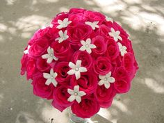 hot pink roses and stephanotis with pearl centers Designed By: hillside-consultants.com