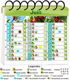 Calendrier Lunaire Juin 2020.Les 17 Meilleures Images De Calendrier Lunaire Calendrier
