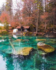 ✨Good Evening Location: Blausee - Switzerland