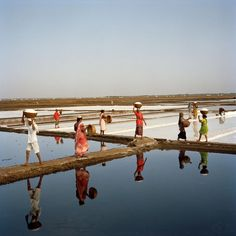 Picture of women harvesting salt in India
