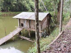 The duck house - Picture of Infinity Resort Kaziranga, Kaziranga ...