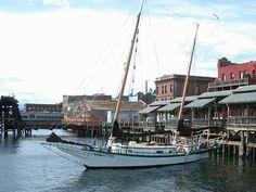 http://www.boat-links.com/PT/PT2003 bugeye /MorningStar-1.jpg