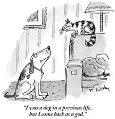 Dog Cartoons in The New Yorker : The New Yorker.