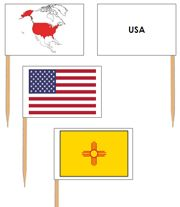 United States Pin Map Flags