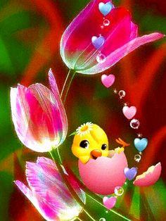 Beautiful Gif, Beautiful Birds, Gif Bonito, Flowers Gif, Bouquet Flowers, Gift Bouquet, Easter Wishes, Free To Use Images, Good Morning Flowers