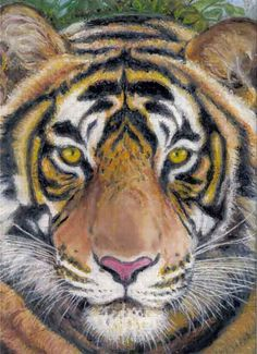 Painting of a Tiger created by Ann Curtis.