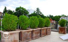 #landscape #architecture #garden #terrace #flowerpot