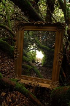 Mirror into another world