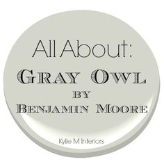 All About: Benjamin Moore Gray Owl - Undertones and More! Grays are rarely simple and Gray Owl is no exception. When my e-design clients ask for a gray the Gray Owl Paint, Grey Paint Colors, Wall Colors, House Colors, Colour Gray, Stain Colors, Benjamin Moore Grau, Benjamin Moore Grey Owl, Benjamin Moore Paint