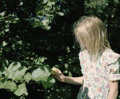 ©Elena Tutatchikova  [Exhibition] エレナ・トゥタッチコワ / In Summer: Apples, Fossils and the Book