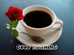 Best good Morning Wishes With Red Rose Images – Share your Emotion with Images Good Morning My Love, Good Morning Coffee, Good Morning Picture, Good Morning Friends, Good Morning Everyone, Good Morning Messages, Morning Pictures, Good Morning Wishes, Morning Quotes
