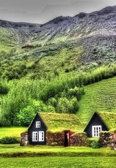 Traditional Turf Farmhouses in Skogar, Iceland https://www.facebook.com/CoolFactsAndNature/photos/pb.561482850553883.-2207520000.1436996997./860631500639015/?type=3