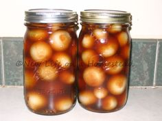 Pickled Onions Recipe and Instructions - New Life On A Homestead