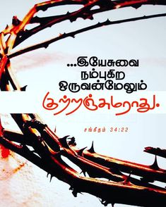 Peace Bible Verse, Bible Verses, Bible Words Images, Tamil Christian, Tamil Bible, Christian Verses, Bible Verse Wallpaper, Bible Promises, Jesus Quotes