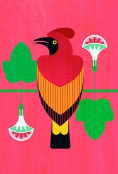 scott partridge - Bird of Paradise art Fenix Bird, Kenya, Funny Sketches, Buy Birds, Bird Illustration, Bird Drawings, Happy Animals, Bird Design, Animals